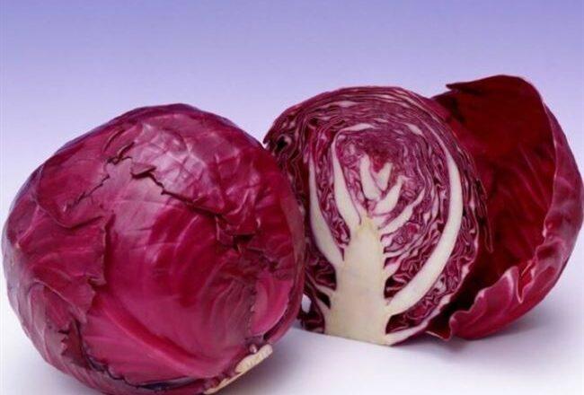 Популярные сорта и гибриды краснокочанной капусты
