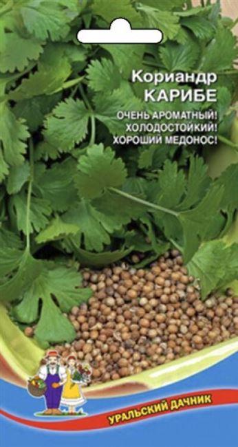 4 сорта высокоурожайной и вкусной Кинзы, которые я сею каждый год
