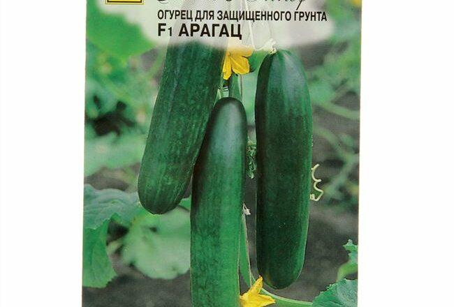 Семена огурца Арагац F1