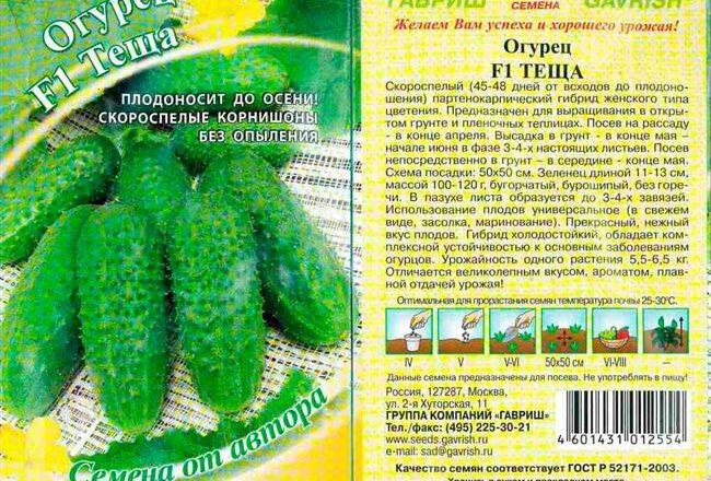 Сорт огурцов Бенефис F1: характеристики, описание и отзывы огородников