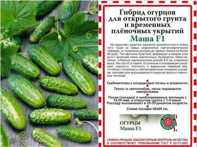 Про овощи - технология выращивания, агротехника, советы,отзывы