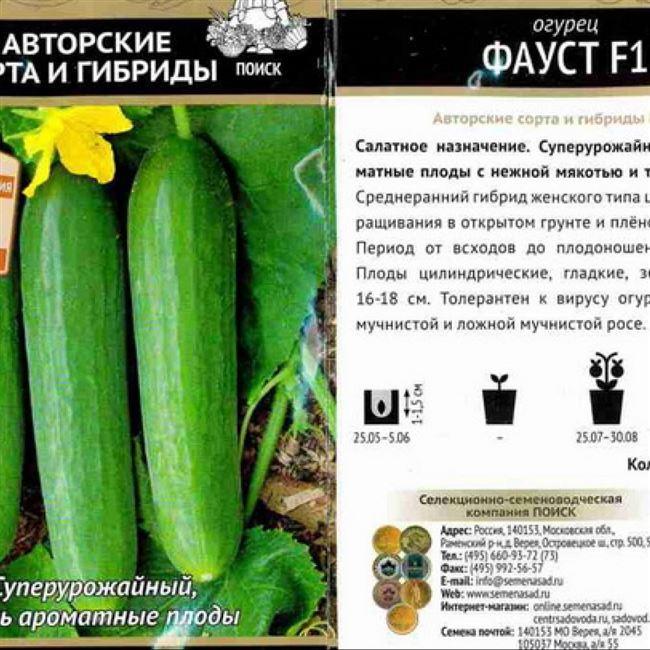 Сбор и хранение урожая огурцов