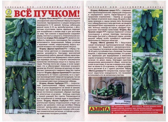 Отзывы садоводов о лучших самоопыляемых сортах