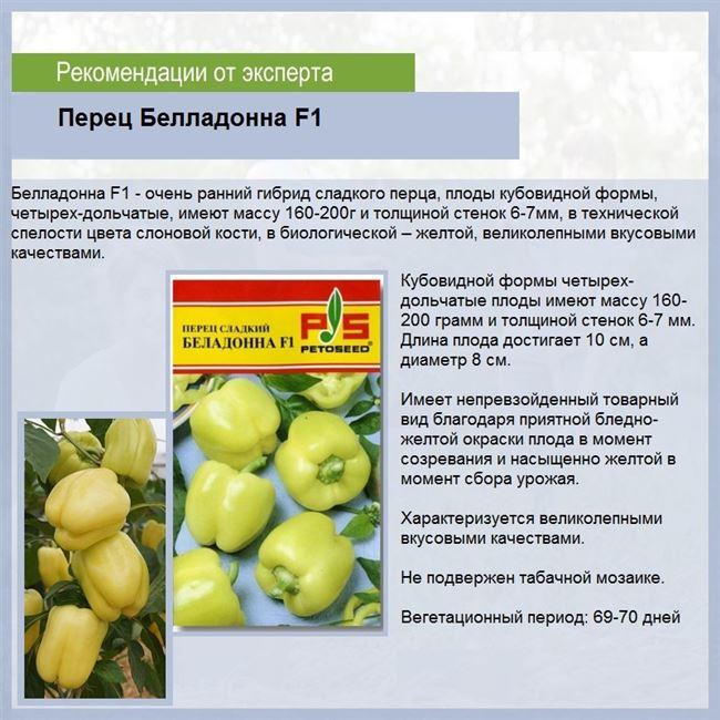 Описание грозди и плодов