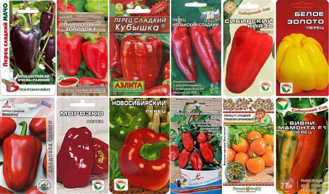 Подробнее о томатах
