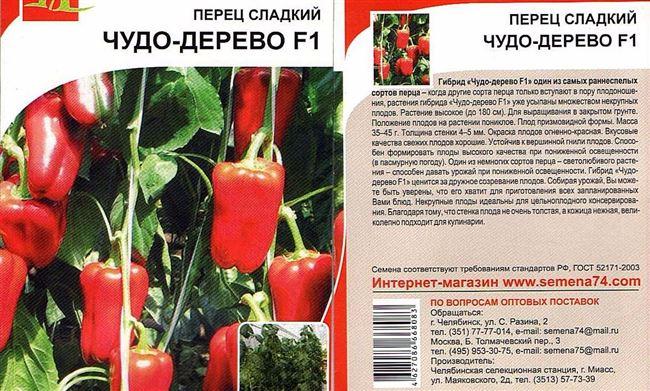 Характеристика внешнего вида растения и плодов