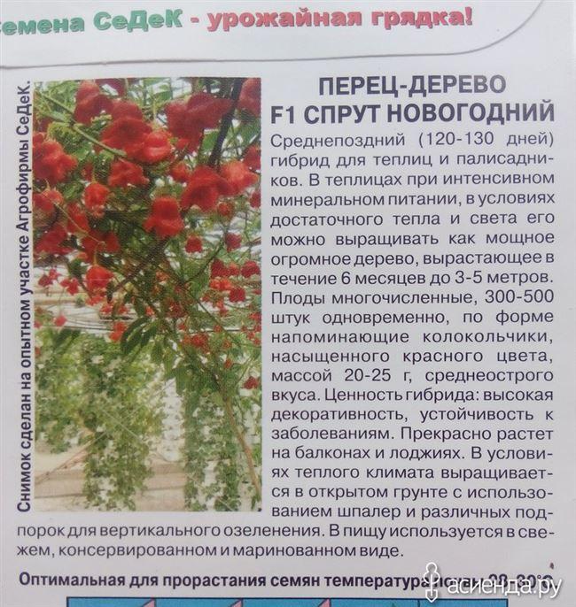 Плюсы и минусы выращивания