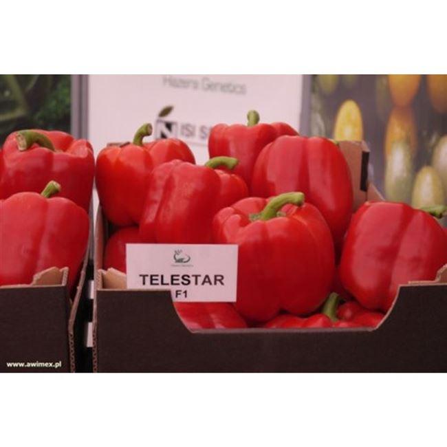Заказать семена перца сладк. Телестар F1