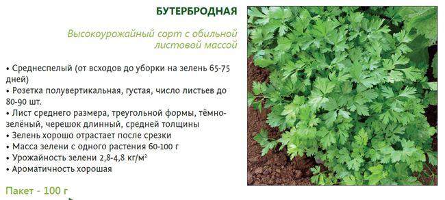 Характеристики растения
