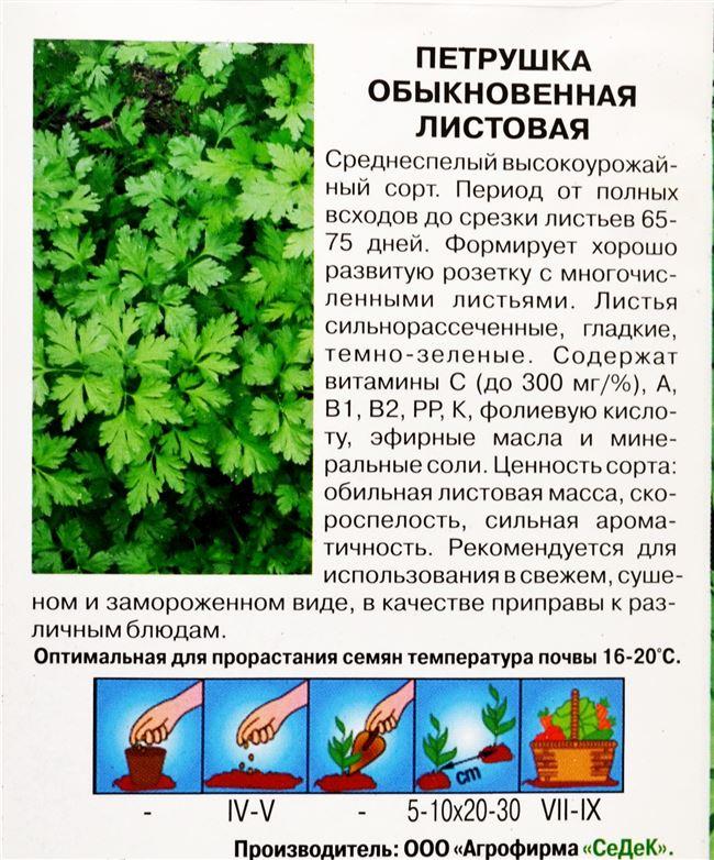 Болезни петрушки листовой