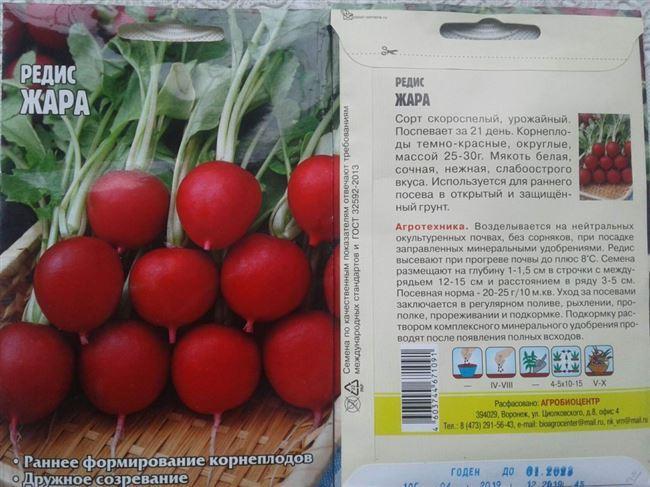 Редис – описание, характеристика, фото