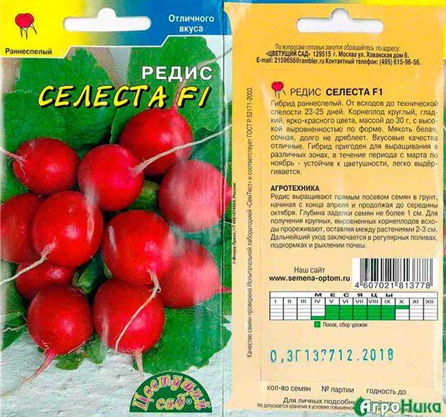 Описание товара - Полонеза 1 кг. редис Moravoseed - семена редиса