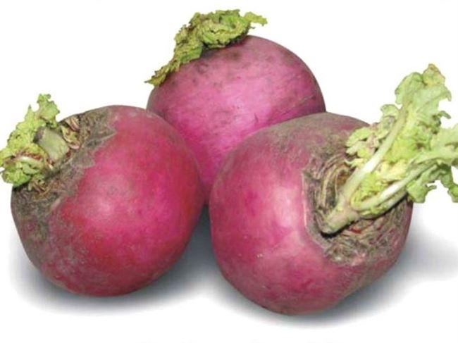 Отзывы овощеводов