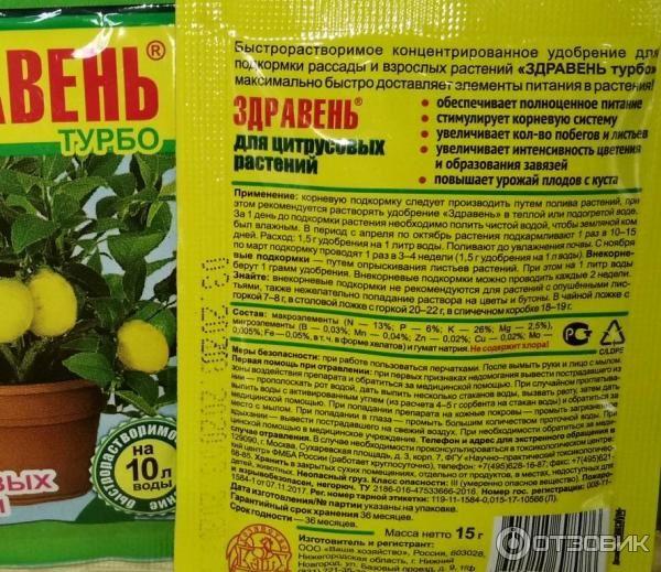 3 правила качественной подкормки лимона