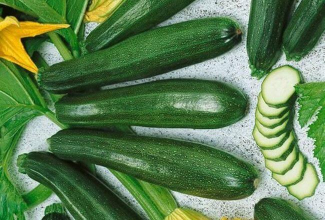 Круглые кабачки: описания популярных сортов с крупными и мелкими плодами